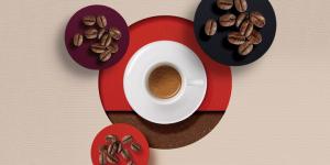 Illy Coffee Roast Types